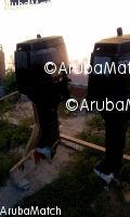 Aruba 2 tohatsu outboards