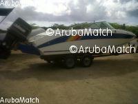 Aruba boto Celebrity